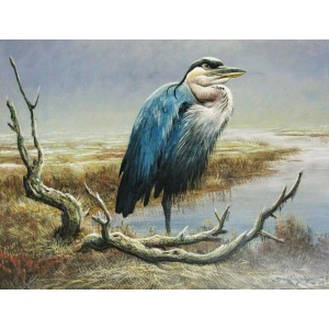 09_great_blue_heron
